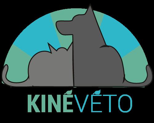 Kinévéto | Vétérinaire, ostéopathie, chat, chien | Saint Étienne Loire
